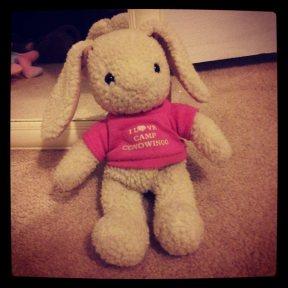 Conowingo Bunny
